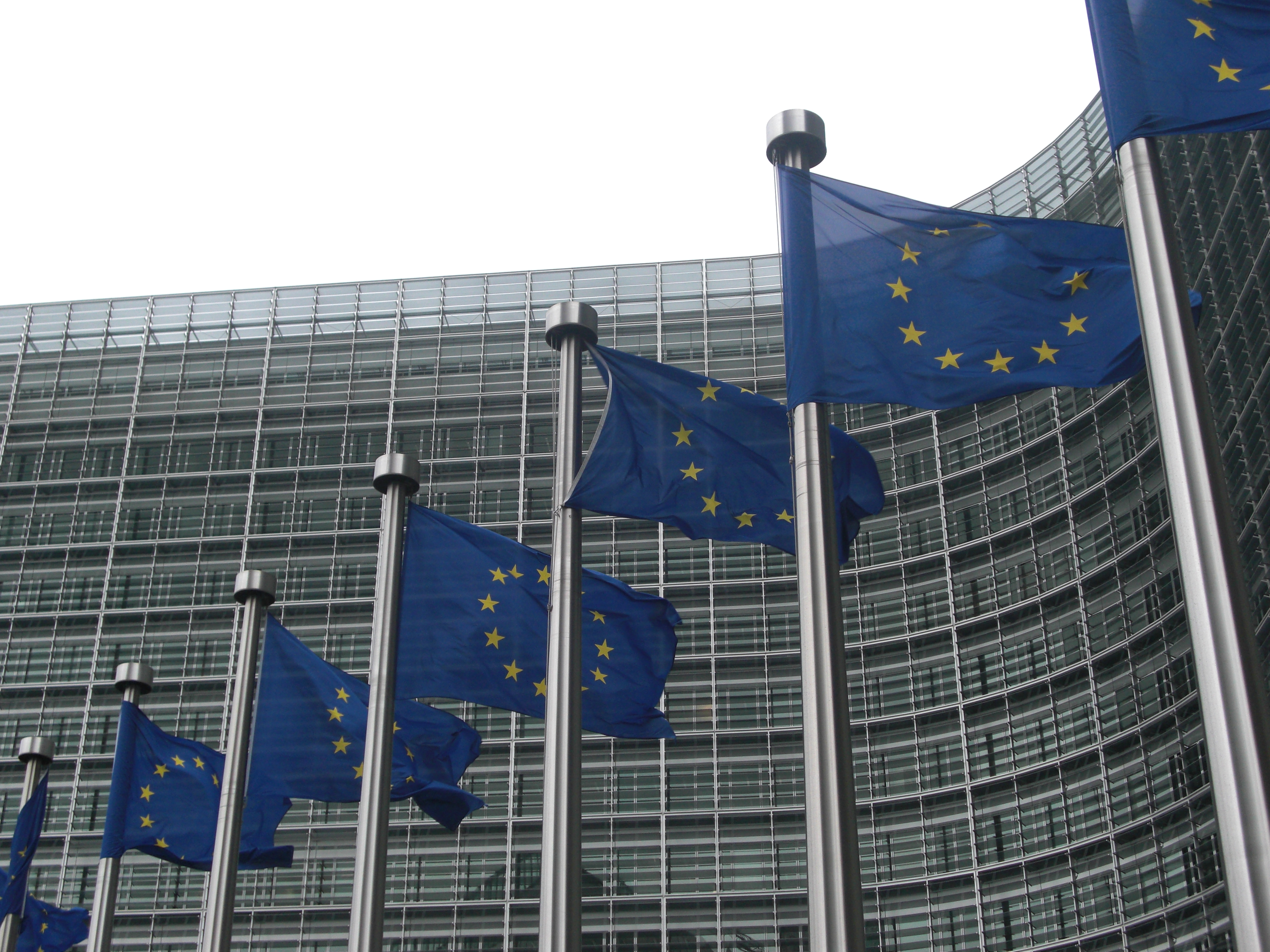 W PE o polityce międzynarodowej